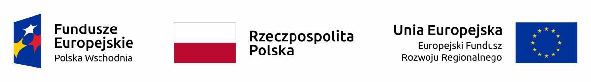 Budowa DW na odcinku od skrzyżowania ul. Podkarpackiej z ul. 9 Dywizji Piechoty w Rzeszowie (DK 19) do węzła Rzeszów-Południe